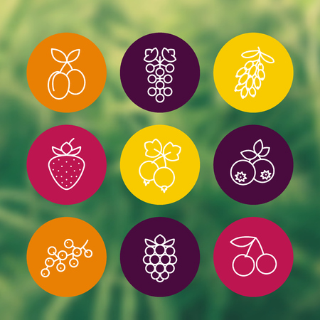 whortleberry: Berries line icons set, raspberry, currant, blueberry, cherry, grape, barberry, plums, strawberry