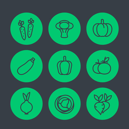 pumpkin tomato: Vegetables line icons set, carrot, broccoli, courgette, pumpkin, pepper, cabbage, beet, tomato, onion