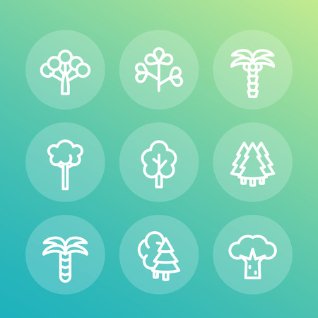 Trees line icons set, palm, fir, baobab, eucalyptus