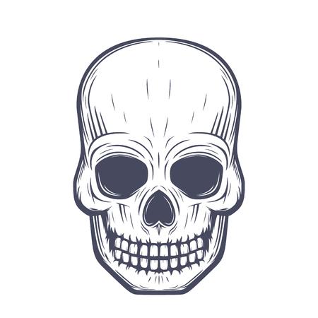 halloween tee shirt: skull vector illustration, front view over white