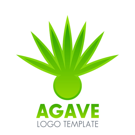 Agave plant logo element over white