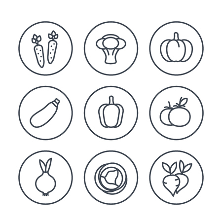 Vegetables line icons in circles on white, vector illustration