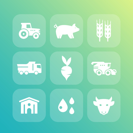 Agriculture, farming icons set, cattle raising, hangar, harvest, agrimotor, combine harvester