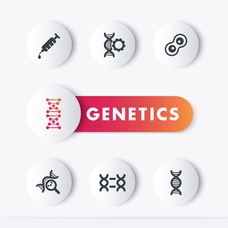 genetic modification: genetics icons set, genetic modification, research, dna chains, vector illustration