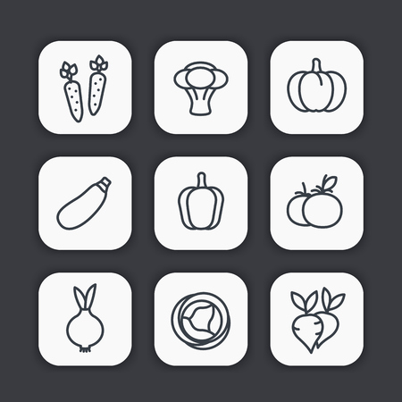 Vegetables line icons set