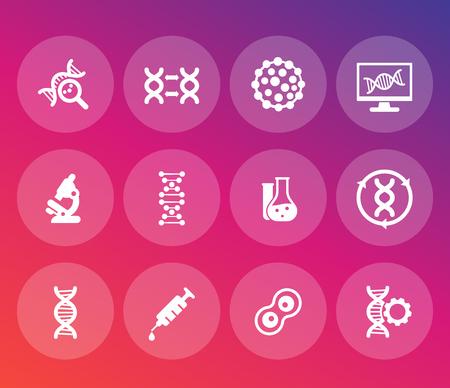 Conjunto de iconos genéticos, cadenas de ADN, modificación genética e investigación. Ilustración de vector