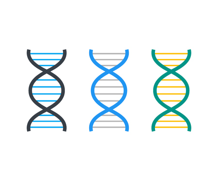 DNA strands vector icon
