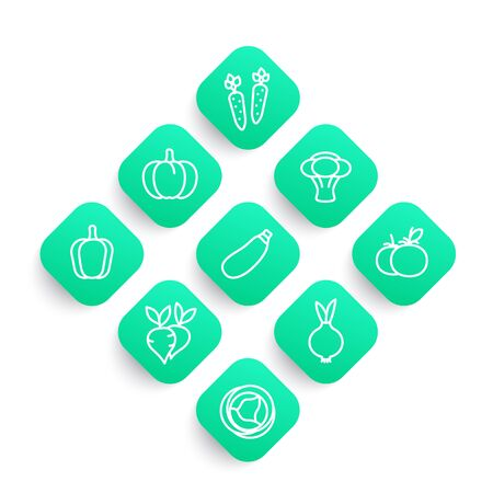 Vegetables line icons set, carrot, broccoli, courgette, pumpkin, cabbage, beet, tomato, onion Zdjęcie Seryjne - 92849932