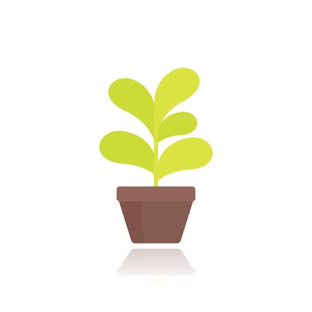 plant in pot in flat style Banque d'images - 133833068