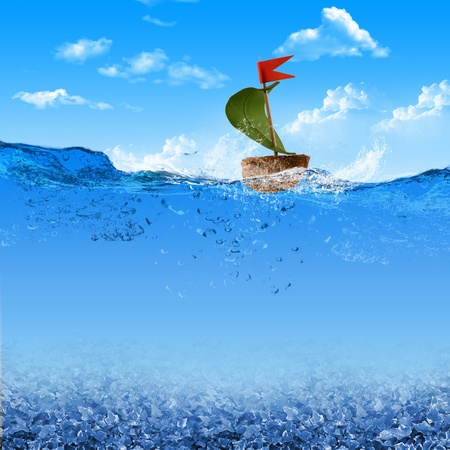 nutshell: Nutshell ship with green leaf sail and red flag