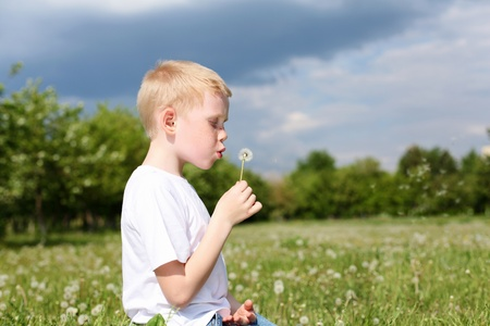 flowers boy: red-hair boy with dandelion in the park Stock Photo