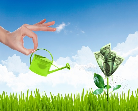 Human hand with a pot watering growing money tree Stock Photo - 12404310