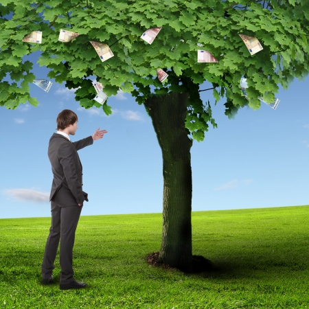 one hundred dollar bill: Collage with a money tree and young business man Stock Photo