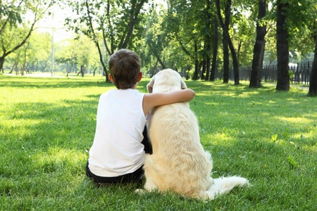 Teenager boy in the park with a golden retriever dog Stock Photo