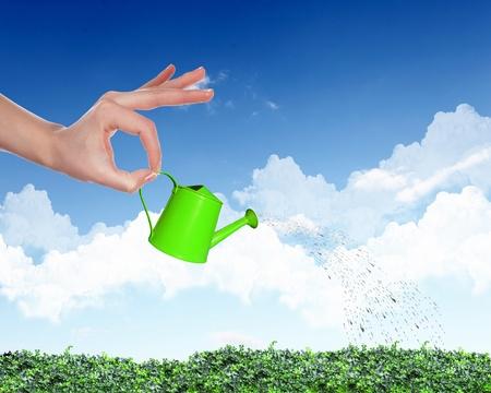 regando plantas: La mano del hombre con la hierba de color naranja de riego riego pote verde