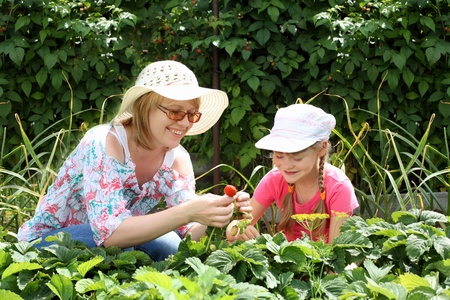 Mother and daughter engaged in gardening together photo
