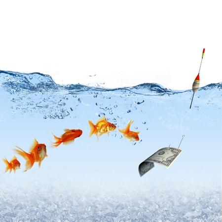 민물의: 황금 물고기와 돈을 상징 수영의 콜라주