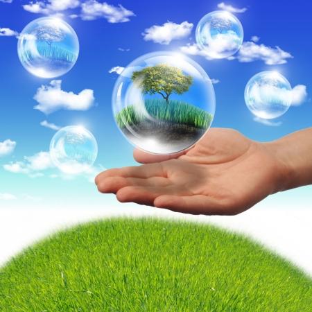 sostenibilidad: Ilustración ofair burbujas con el interior de la planta verde como símbolo de protección de la naturaleza