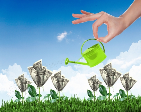 making a save: Human hand with a pot watering growing money tree