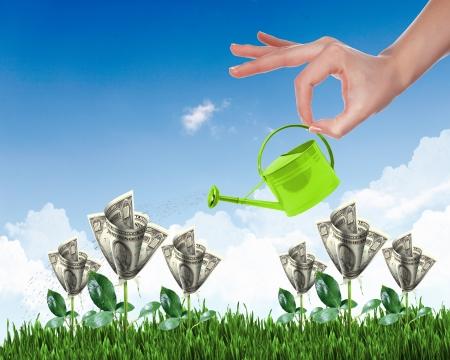 fluss: Menschliche Hand mit einem Topf gie�en wachsende Geldbaum