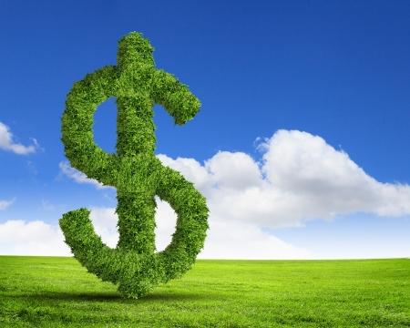 Groen gras dollar symbool tegen de blauwe hemel