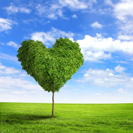 Groen gras hartsymbool tegen blauwe hemel Stockfoto