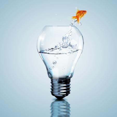 złota rybka: Złota ryba w wodzie wewnątrz żarówka