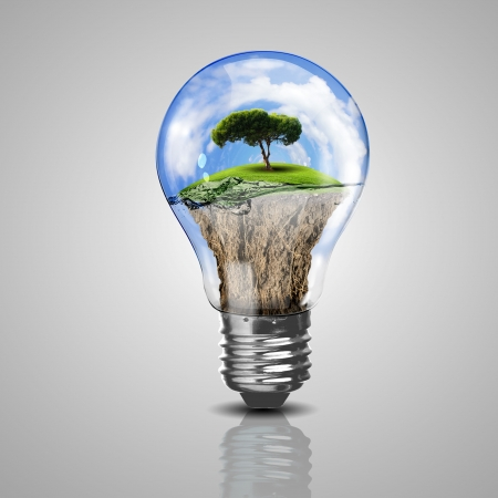 Electric light bulb and a plant inside it as symbol of green energy Stock Photo - 15187200
