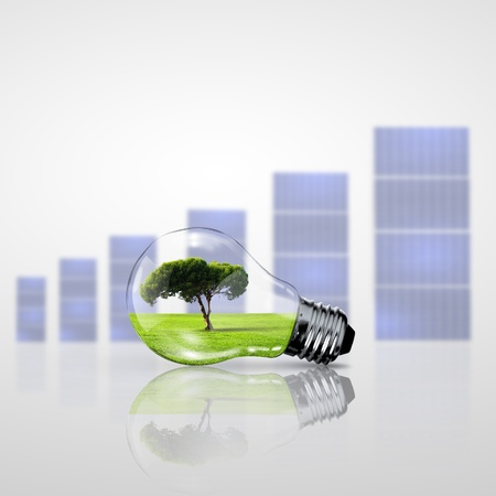 Electric light bulb and a plant inside it as symbol of green energy Stock Photo - 15187154