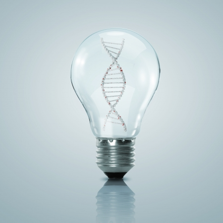 nucleotide: Human DNA strand inside a electric light bulb Stock Photo