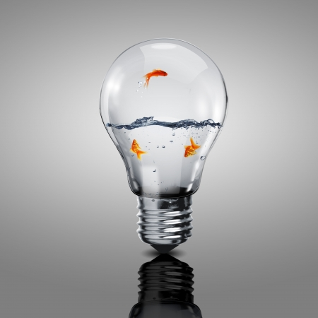 Gold fish in water inside an electric light bulb Stock Photo - 14910937