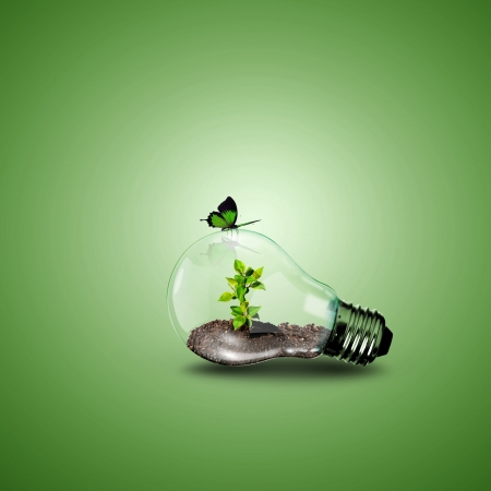 natural process: Electric light bulb and a plant inside it as symbol of green energy