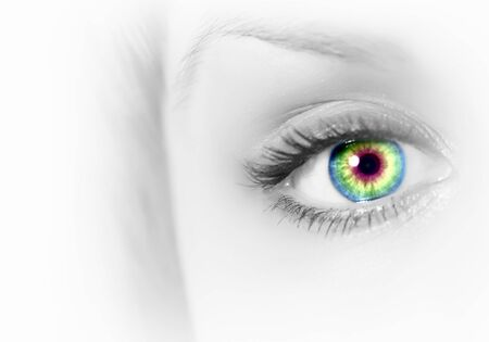 Photo of the human eye against grey background Stock Photo - 15628851