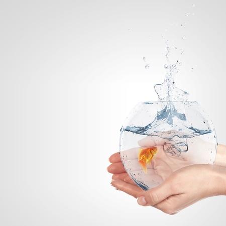 Illustration with goldfish in aquarium on white background Stock Illustration - 15696732