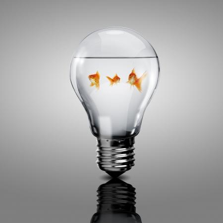 bombilla: Oro pez en el agua en el interior de una bombilla el�ctrica