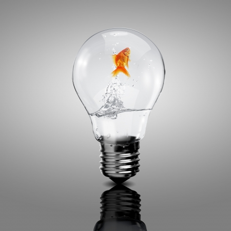 Gold fish in water inside an electric light bulb Stock Photo - 16493483