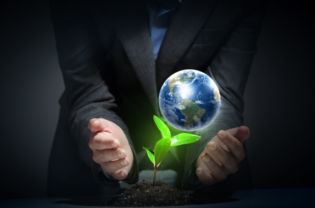 hands, the young sprout and our planet Earth Stock Photo - 16620918