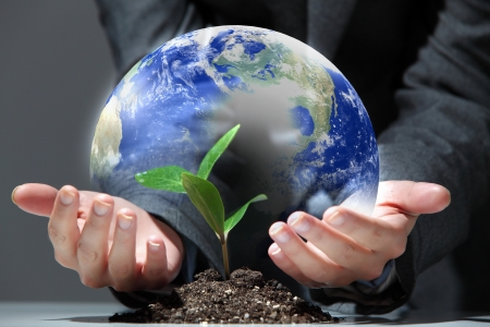 hands, the young sprout and our planet Earth Stock Photo - 16697105