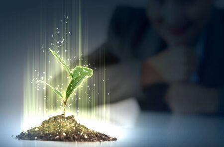 agriculturist: Business and ecology concept  Rising young green sprout