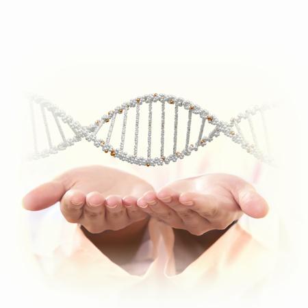 genetica: Immagine del filamento di DNA su sfondo con le mani umane