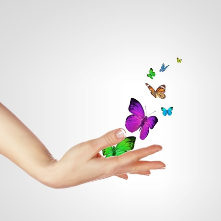 purple butterfly: The Human hands releasing colourful butterflies illustration