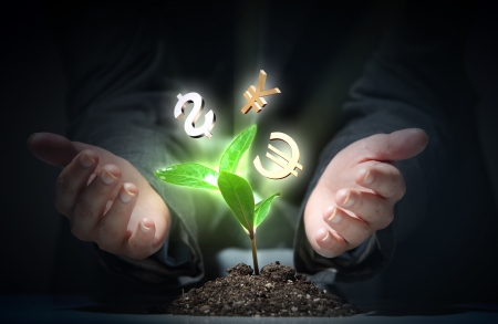 Money Sprouting - finance and money symbols sprouting from stems Stock Photo - 17056243