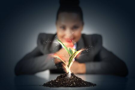 Business and ecology concept  Rising young green sprout photo