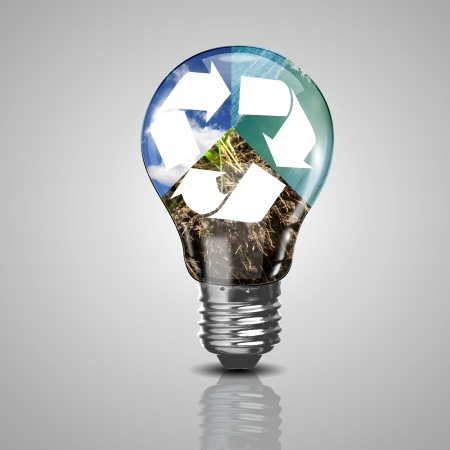 Electric light bulb and a plant inside it as symbol of green energy Stock Photo - 18745765
