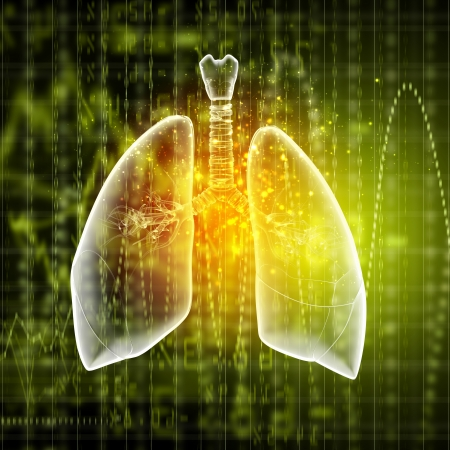 Schematic illustration of human lungs with the different elements on a colored background  Collage  Stock Illustration - 18747537