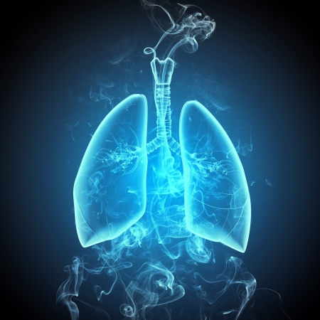 Schematic illustration of human lungs with the different elements on a colored background  Collage Stock Illustration - 18822548
