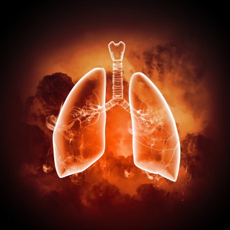 Schematic illustration of human lungs with the different elements on a colored background  Collage Stock Illustration - 18803980