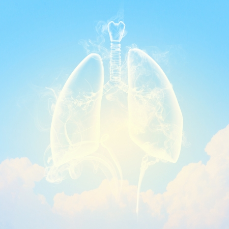 Schematic illustration of human lungs with the different elements on a colored background  Collage Stock Illustration - 18793510