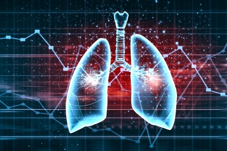 bronchiole: Schematic illustration of human lungs with the different elements on a colored background  Collage  Stock Photo