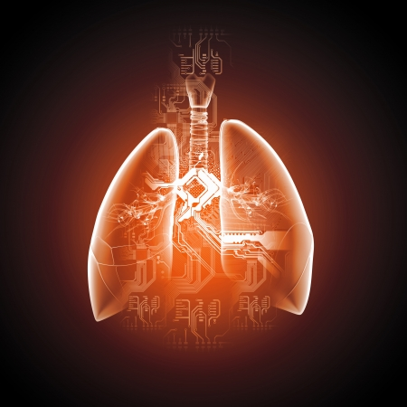 Ilustraci?n esquem?tica de los pulmones humanos con los distintos elementos de un collage de fondo de color